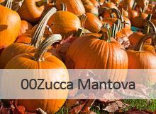Zero Zero Zucca Mantova 2014
