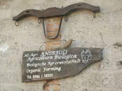 Azienda Agricola Biologica Loghino Canova di Alfredo Andreoli Schivenoglia (Mantova)