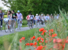 Biciclettata delle Torri 2015 Ceresara (MN)