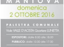 Borsa Scambio Giocattoli Mantova 2 ottobre 2016