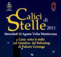 Calici di Stelle 2011 Volta Mantovana (Mantova)
