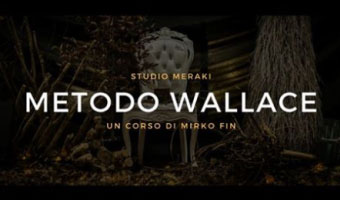 Corso Metodo Wallace Mantova 2017