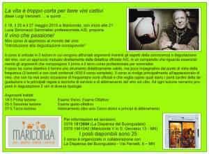 Corso vino che passione Mantova 2015