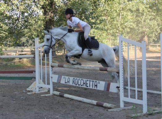 Equitazione Trofeo Gonzaga a Moglia (MN)