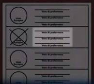Fac simile scheda elettorale Elezione Parlamento Europeo 2014