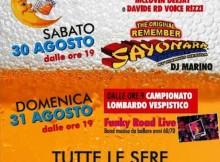 Festa della Birra 2014 Guidizzolo (Mantova)