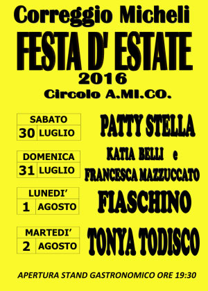 Festa estate 2016 Correggio Micheli (MN)