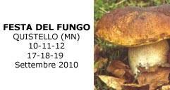 Festa Fungo Quistello 2010