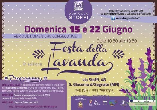 Festa della Lavanda 2014 a San Giacomo delle Segnate (Mantova)