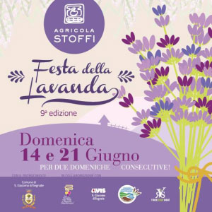 Festa Lavanda 2015 San Giacomo delle Segnate (Mantova)