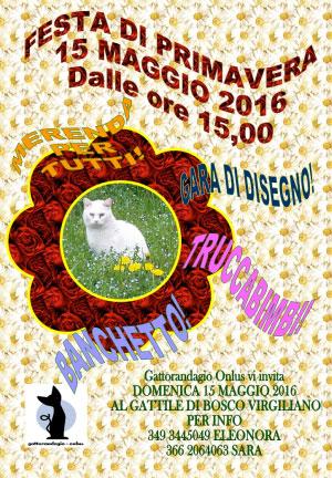 Festa primavera 2016 Gattile di Mantova
