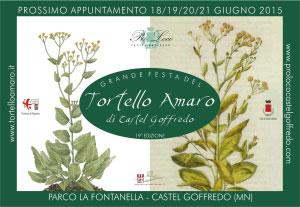 Festa Tortello Amaro 2015 Castel Goffredo (Mantova)