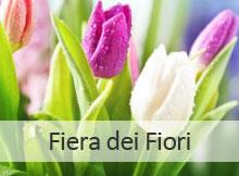 Fiera dei Fiori 2014 Canneto Sull'Oglio (Mantova)