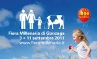 Fiera Millenaria 2011 Gonzaga (Mantova)