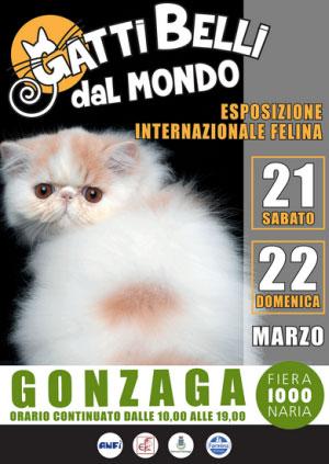 Gatti Belli dal Mondo 2015 Gonzaga (Mantova)
