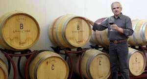vini vegani di Vigna Gianmaria Cunial