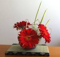 Ikebana Mantova - arte disposizione dei fiori