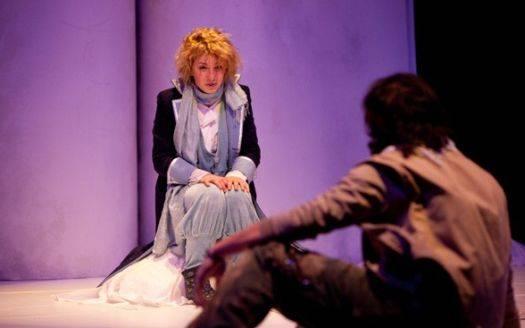 Il Piccolo Principe Teatro Comunale Medole (Mantova)