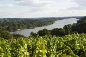 La Loira degustazione ONAV Monzambano (MN)