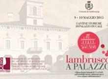 Lambrusco a Palazzo 2015 Sabbioneta (Mantova)