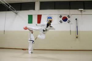 Associazione Sportiva Dilettantistica Lions Taekwondo Valeggio sul Mincio (VR)