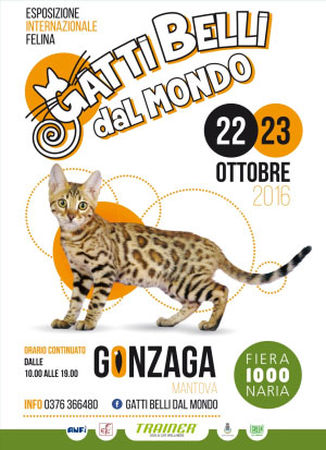 locandina Gatti Belli dal Mondo 2016 Gonzaga Mantova