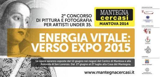 Mantova Mantegna Cercasi 2014