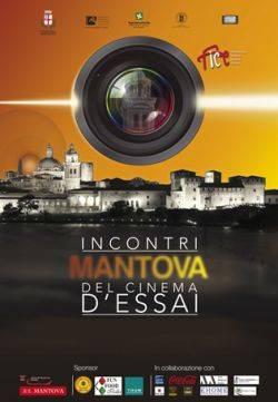 Mantova Incontri del Cinema d'Essai 2013 FICE