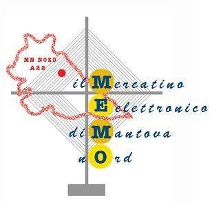 MEMO Mercatino Elettronico di Mantova Nord 2013