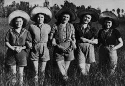 Mondine operaie delle risaie (1940)
