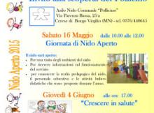 Nido Aperto Asilo Nido comunale Pollicino Cerese di Borgo Virgilio (MN)