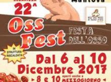 Oss Fest 2017 Castel d'Ario (Mantova)