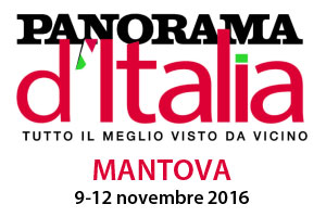 Panorama d'Italia Mantova 2016