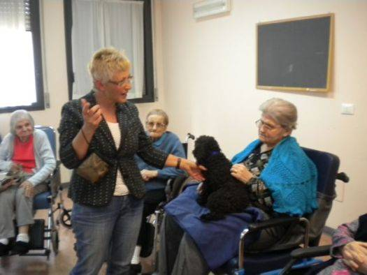 Pet Therapy Pegognaga (Mantova)