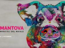 Pinky Mantova 2017 Vita, morte e miracoli del maiale googiol