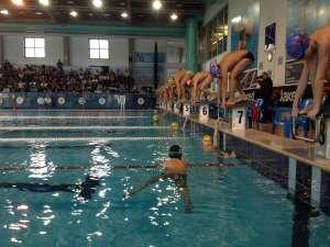 Nuoto mantova manifestazione provinciale fin 2015 - Piscina mantova ...