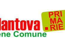 Centrosinistra Primairie PD Mantova 2015