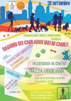Raduno dei cani adottati in canile a Mantova 2014