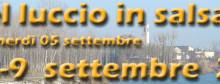 Sagra del Luccio in Salsa 2014 Pozzolo (Mantova)