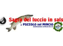 Sagra luccio in salsa Pozzolo sul Mincio (MN) 2017