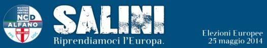 Salini Nuovo Centro Destra NCD