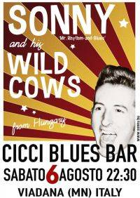 Sonny and his Wild Cows, Ciccibluesbar Viadana (MN)