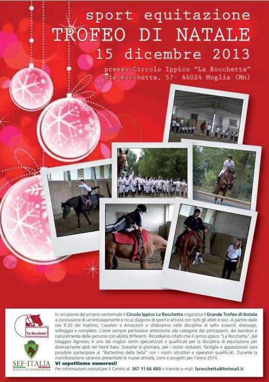 Equitazione Trofeo di Natale 2013 Moglia (Mantova)