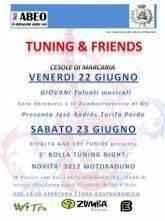 Raduno Tuning & Friends 2012 Cesole di Marcaria (Mantova)