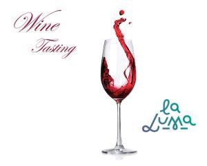 Wine tasting La Luma Borgo Virgilio MN